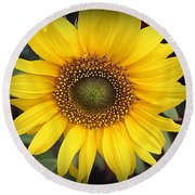 A Touch Of Sunshine - Sunflower Round Beach Towel
