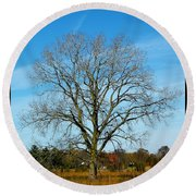 A Tree In Fall... Round Beach Towel