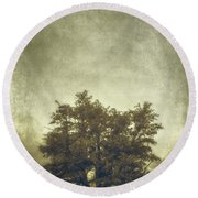 A Tree In The Fog 2 Round Beach Towel