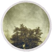 A Tree In The Fog 2 Round Beach Towel by Scott Norris