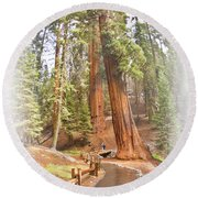 A Walk Among The Giant Sequoias Round Beach Towel