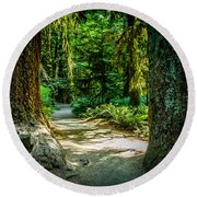 Pathway Cathedral Grove Round Beach Towel