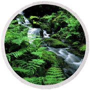 A Waterfall In Redwood National Park Round Beach Towel