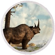 A Woolly Rhinoceros Trudges Round Beach Towel by Daniel Eskridge