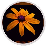 A Yellow Burst Of Sunshine Floral Photography Round Beach Towel