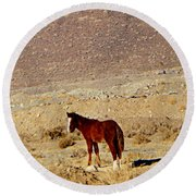 A Young Mustang Round Beach Towel
