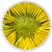 About To Be A Sunflower Round Beach Towel