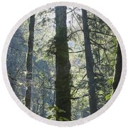 Above The Firs Round Beach Towel