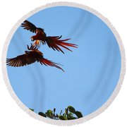 Above The Treetops Round Beach Towel