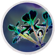 Abstract Flower - Digital Abstract Round Beach Towel