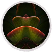 Nature In Abstract Succulent Plant 1 Round Beach Towel