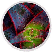 Abstract Of Bromeliad Round Beach Towel