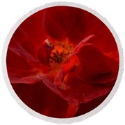 Abstract Red Rose 1a Round Beach Towel
