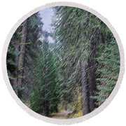 Abstract Road In The Wilderness Round Beach Towel