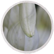 Abstract Yucca Blossom Round Beach Towel