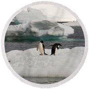Adelie Penguins On Ice Round Beach Towel