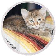 Adorable Kitten Round Beach Towel