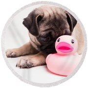 Adorable Pug Puppy With Pink Rubber Ducky Round Beach Towel