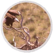 Adult Eagle With Eaglet  Round Beach Towel