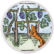 Aesop The Fox & The Grapes Round Beach Towel