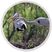 Affectionate Great Blue Heron Mates Round Beach Towel
