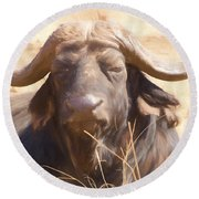 African Buffalo  Round Beach Towel