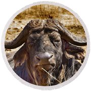 African Buffalo V3 Round Beach Towel