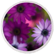 African Daisy Collage Round Beach Towel