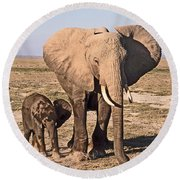 African Elephant Mother And Calf Round Beach Towel