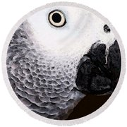 African Gray Parrot Art - Seeing Is Believing Round Beach Towel