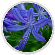 African Lily Round Beach Towel