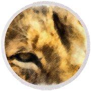 African Lion Eyes Round Beach Towel