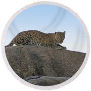 African Safari Leopard 1 Round Beach Towel
