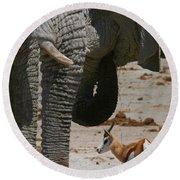 African Waterhole Round Beach Towel