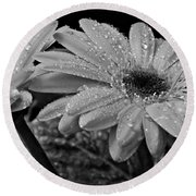 After The Rain Bw Round Beach Towel