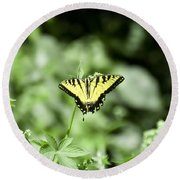 Afternoon Butterfly Round Beach Towel
