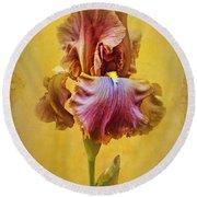 Afternoon Delight - 2 Round Beach Towel