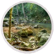 Afternoon In The Jungle Round Beach Towel