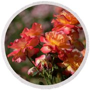 Afternoon Roses Round Beach Towel