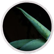Agave Abstract 2 Round Beach Towel