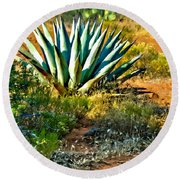 Agave In Secret Mountain Wilderness West Of Sedona Round Beach Towel