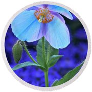 Aglow In Blue Tall View Round Beach Towel