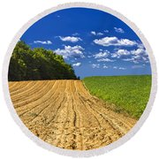 Agricultural Landscape - Young Corn Field Round Beach Towel