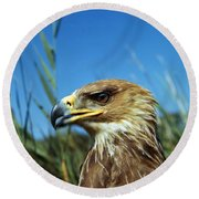 Aigle Imperial Aquila Heliaca Round Beach Towel
