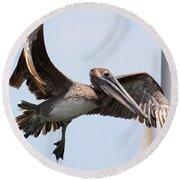 Airborne Brown Pelican Round Beach Towel