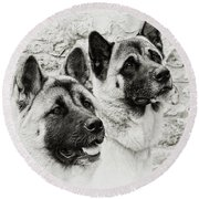 Akitas Round Beach Towel