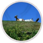 Al Johnsons Resturant Goats Round Beach Towel