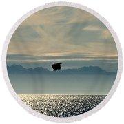 Alaskan Eagle At Sunset Round Beach Towel