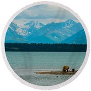 Alaskan Grizzly And Spring Cub Round Beach Towel