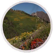 Albion Basin Summer Round Beach Towel